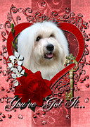 Coton De Tulear Framed Prints - Valentines - Key to My Heart Coton de Tulear Framed Print by Renae Frankz