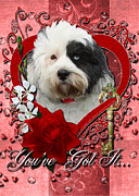 Sweetest Day Prints - Valentines - Key to My Heart Tibetan Terrier Print by Renae Frankz