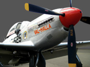 P51 Photo Posters - Valhalla Poster by Robert Trauth