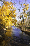 Valley Forge Acrylic Prints - Valley Forge Creek in Autumn Acrylic Print by Bill Cannon
