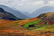 Connemara Photos - Valley of Colors by Pierre Leclerc