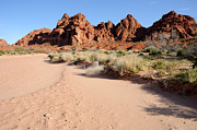 Slickrock Photo Prints - Valley of Fire Wash Print by Gary Whitton