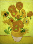 Vincent Van Gogh Posters - Van Gogh Sunflowers Poster by Vincent Van Gogh
