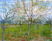 Blooming Painting Posters - Van Gogh The Pink Orchard Poster by Vincent Van Gogh