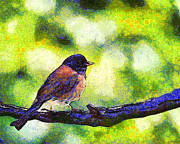 Small Bird Posters - Van Gogh.s Little Chickadee Perched On A Branch . 7D6397 Poster by Wingsdomain Art and Photography