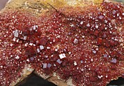 Crystalline Art - Vanadinite Mineral Sample by Dirk Wiersma