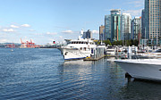 Vancouver Bc Downtown Skyline Panorama Marina Canada. Print by Gino Rigucci