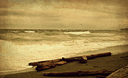 Brown Tones Photos - Vancouver Island Waters sepia by Marilyn Wilson