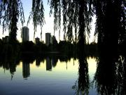 Vancouver Photo Prints - Vancouver- Lost Lagoon Print by Will Borden