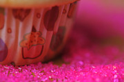 Happy Posters Originals - Vanilla Cupcake Closeup by Jim Harris