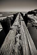 Sepia Acrylic Prints - Vanishing Point Folly Beach by Dustin K Ryan