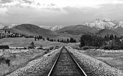 Montana Photos - Vantage Point by Karon Melillo DeVega