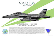 Fa-18 Posters - VAQ-135 Growler Poster by Clay Greunke