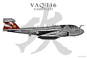 F-18 Digital Art - VAQ-136 Prowler by Clay Greunke