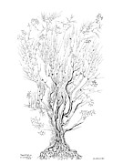 Mathematics Drawings Prints - Variation on a Cayley tree Print by Regina Valluzzi
