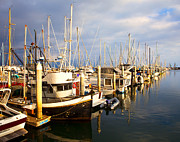 Docked Boats Framed Prints - Variety of Boats in Marina Framed Print by David Buffington