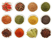 Culinary Prints - Variety of different spices iin bowls  Print by Sandra Cunningham