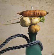 Variety Photos Posters - Variety of vegetables Poster by Bernard Jaubert