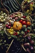 Baskets Photos - Various Vegetables In A Basket by Sam Abell