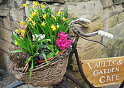 Vaults Photos - Vaults and Garden Cafe in the Spring by Anne Gordon