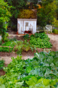 Vegetable Garden Posters - Vegetable Garden Poster by Jill Battaglia