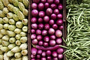 Green Beans Posters - Vegetable triptych Poster by Jane Rix