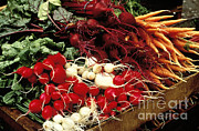 Matsu Framed Prints - Vegetables Framed Print by Joseph Rychetnik