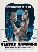 Velvet Framed Prints - Velvet Vampire, Poster Art, 1971 Framed Print by Everett