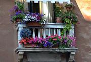 Venetian Balcony Print by Terence Davis