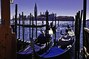 Gondolier Prints - Venice Dream Print by Madeline Ellis