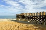 Ventnor Beach Groyne Print by Rod Johnson