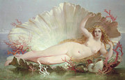 Nude Posters - Venus Poster by Henry Courtney Selous