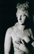 Breast Photo Metal Prints - Venus Pudica  Metal Print by Unknown