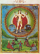 Venus Ruler Of Taurus And Libra Print by Photo Researchers