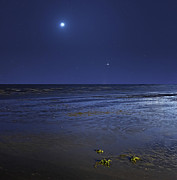 Crescent Moon Photos - Venus Shines Brightly by Luis Argerich
