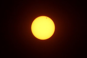 Venus Transit Prints - Venus Transit of Sun June 5th 2012 Print by Adam Long