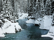 Stuart Turnbull Metal Prints - Verdant creek - Winter 6 Metal Print by Stuart Turnbull