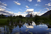 Rundle Prints - Vermillion Lakes and Mount Rundle At Dusk Print by Teresa Zieba