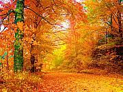 Vermont Autumn Print by Vicky Brago-Mitchell