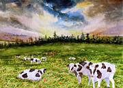 Harding Bush - Vermont Cows Sun Rise