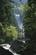 Fall River Scenes Prints - Vernal Fall Seen Through Lush Spring Print by Marc Moritsch