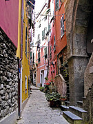 Cinque Terre Posters - Vernazza Walkways Poster by Forest Alan Lee