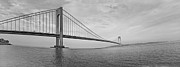 Verrazano Bridge - Small - 6 Ft Long - Panorama Print by Alex AG