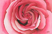 Floral Posters - Vertigo Rose Poster by Ken Powers