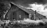 Old Barns Prints - Very Abandoned  Print by Norman  Andrus