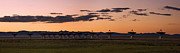 Electronic Photos - Very Large Array Panorama by Matt Tilghman
