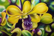 Flower Center Paintings - Vibrant by Barbara Eberhart - Printscapes