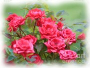 Victorian Style Digital Art - Victorian Rose Garden - Digital Painting by Carol Groenen