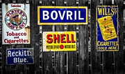 Old Shell Posters - Victorian Signs Poster by Adrian Evans