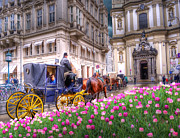 Horse Drawn Posters - VIENNA Fiaker Peterskirche Tulips Poster by Juli Scalzi